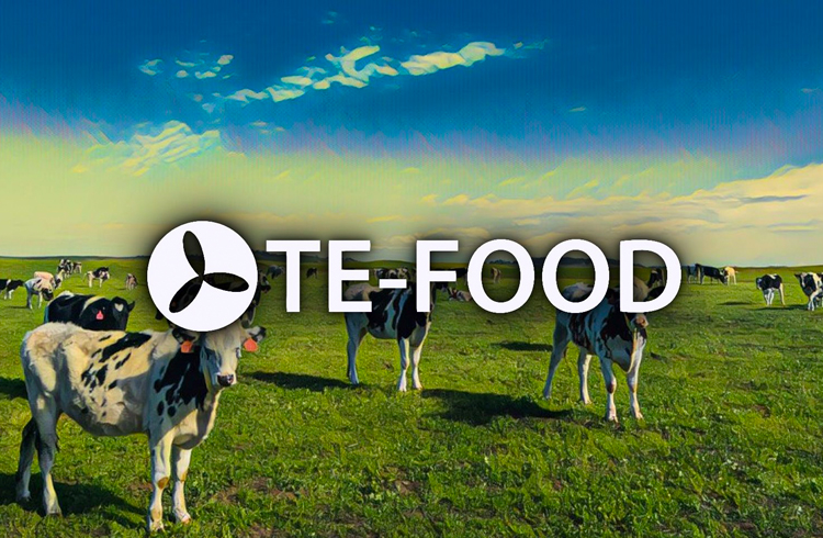 TE-FOOD: parceria com a HALAL TRAIL promete levar empresas de alimentos Halal para o Blockchain