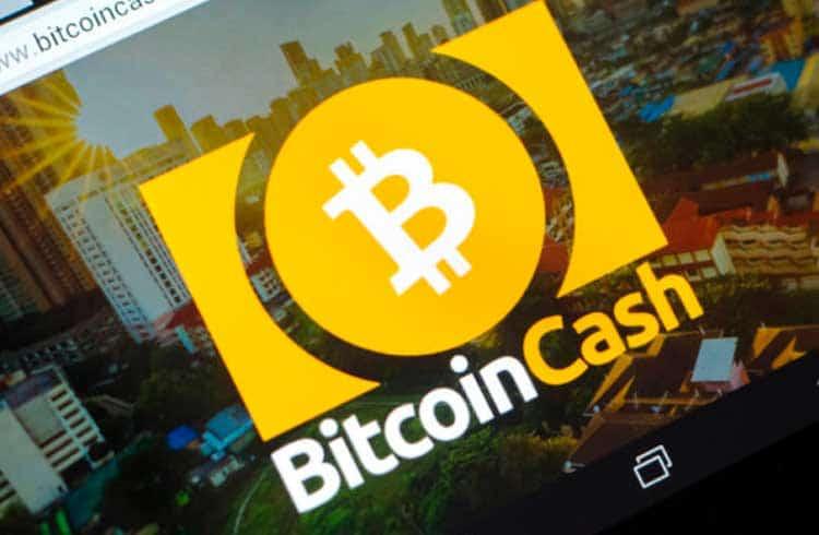 Bitcoin Cash é destaque entre as criptomoedas que valorizaram nas últimas 24 horas