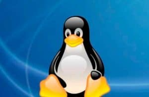 Fundação Linux lança novo curso focado na blockchain Hyperledger