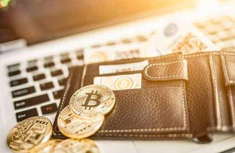 Confira quais são as carteiras mais populares do universo das criptomoedas