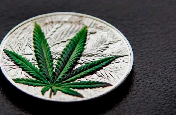 Califórnia pode legalizar o pagamento de impostos com stablecoins para empresas do setor de cannabis