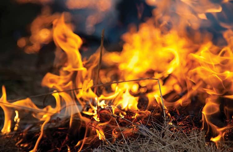 """Binance completa sua sétima """"queima"""" trimestral de tokens BNB"""