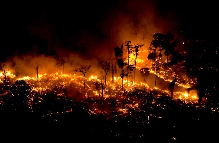 BitPay rejeita doação de US$100 mil em BTC para combater queimadas na Amazônia