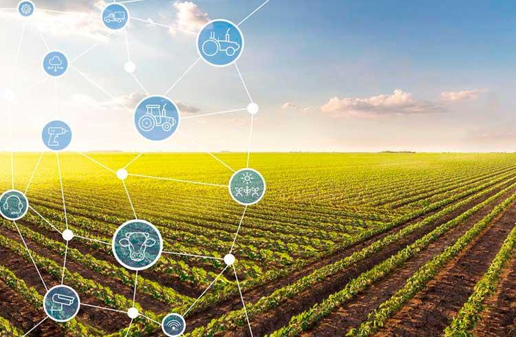 Blockchain pode ser usada no financiamento do agronegócio no Brasil