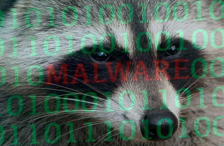 Raccoon Stealer: o novo malware programado para roubar seus Bitcoins