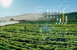 Microsoft registra solução em blockchain voltada ao meio agrícola no Brasil
