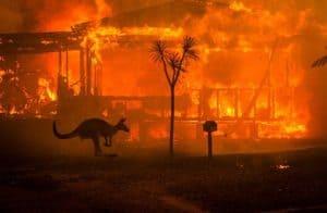 Iniciativa arrecada doações em criptomoedas para auxiliar vítimas dos incêndios na Austrália