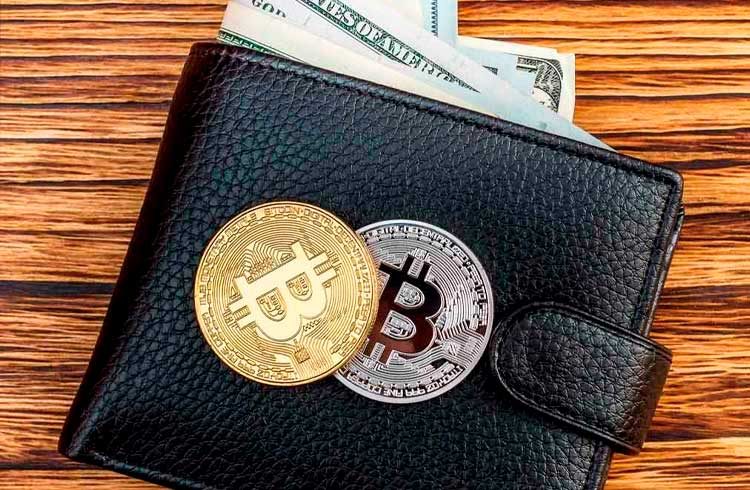 Número de carteiras com mais de 1 Bitcoin cresce nos últimos doze meses