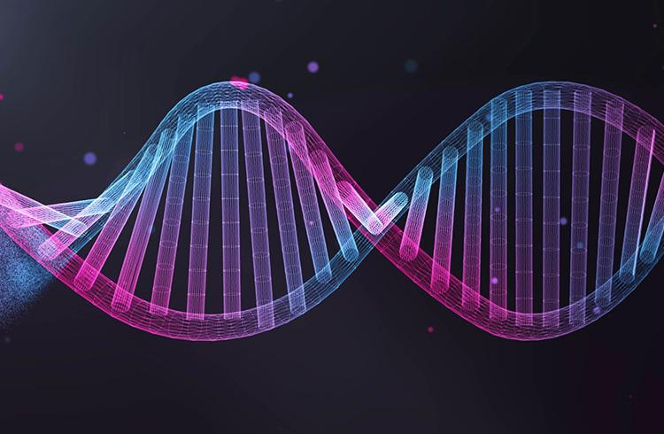 Suposta pirâmide oferece algoritmo genético para negociar criptomoedas