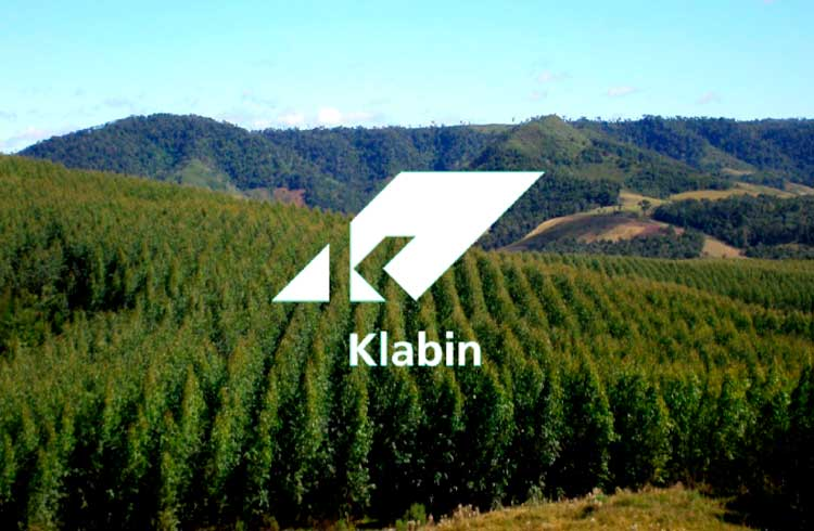 Ações Klabin (KLBN11): qual será o futuro da empresa?