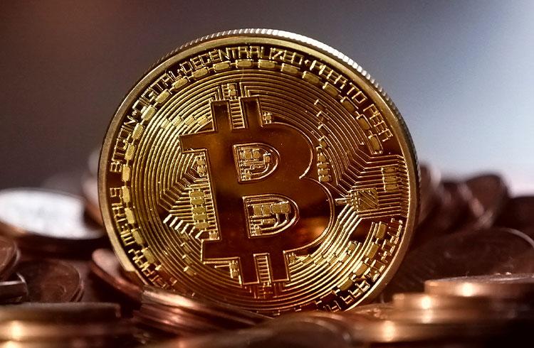 Especialista desmente teoria de concentração de posse no Bitcoin