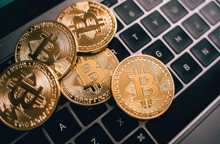 Algoritmo lucra 1.000% ao comprar Bitcoin após críticas de Peter Schiff