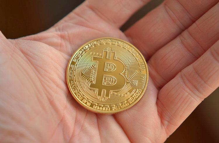 Netflix será a próxima empresa a comprar Bitcoin, segundo Tim Draper