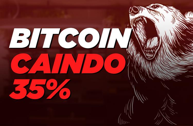 Bitcoin derretendo, saiba o que fazer