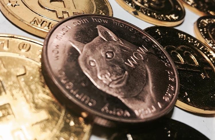 Brasileiro fica milionário com Dogecoin, não vende e perde R$ 830 mil em 1 dia