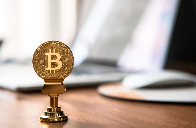 CEO do Twitter e Elon Musk anunciam debate sobre Bitcoin ao vivo
