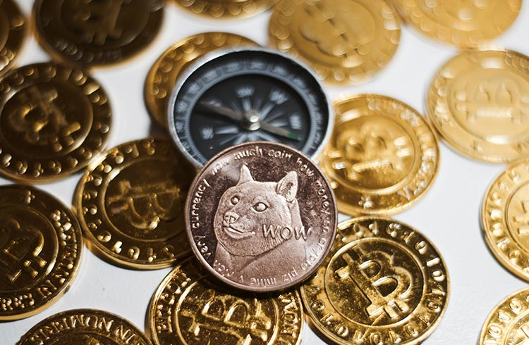 EUA vão transformar dólar em Dogecoin, critica congressista