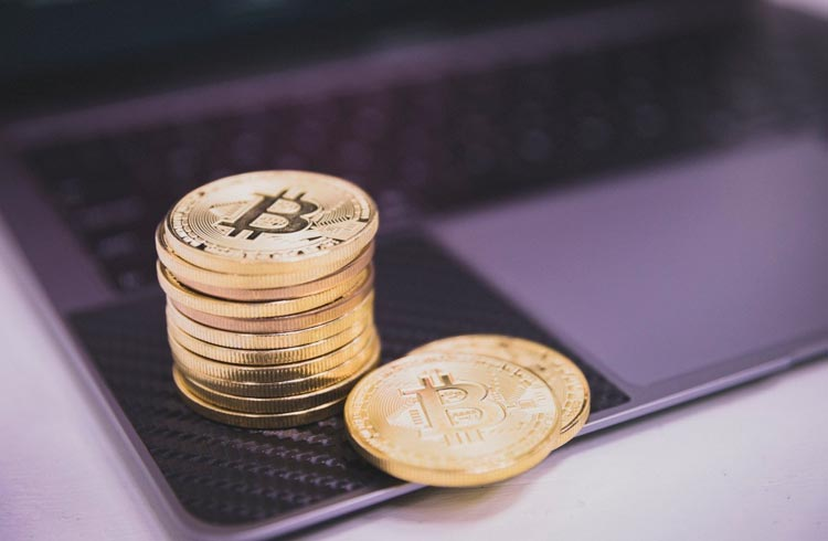 Willy Woo: sardinhas estão acumulando Bitcoin, não há tendência de baixa