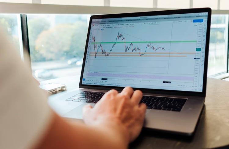 """Token do """"coelhinho"""" salta 1.000% em 4 dias após ICO"""