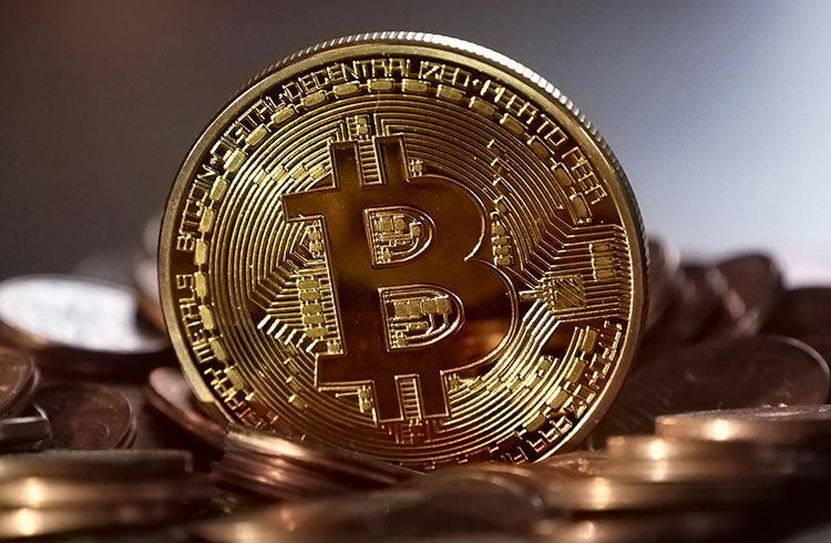Voo de galinha ou nova alta: Bitcoin registra maior sequência de ganhos desde dezembro