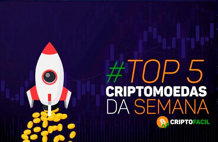 Alta do Bitcoin e criptomoedas-meme: confira as maiores valorizações da semana